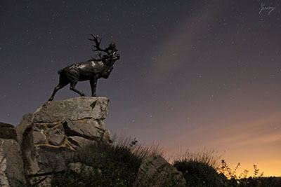 Beaumont-Hamel Memorial, France