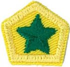 Green Star:  [A 05 -Know what to do if lost] [A 07 -Safely put out a fire*] [B 02 -Cook a hot meal for pack]